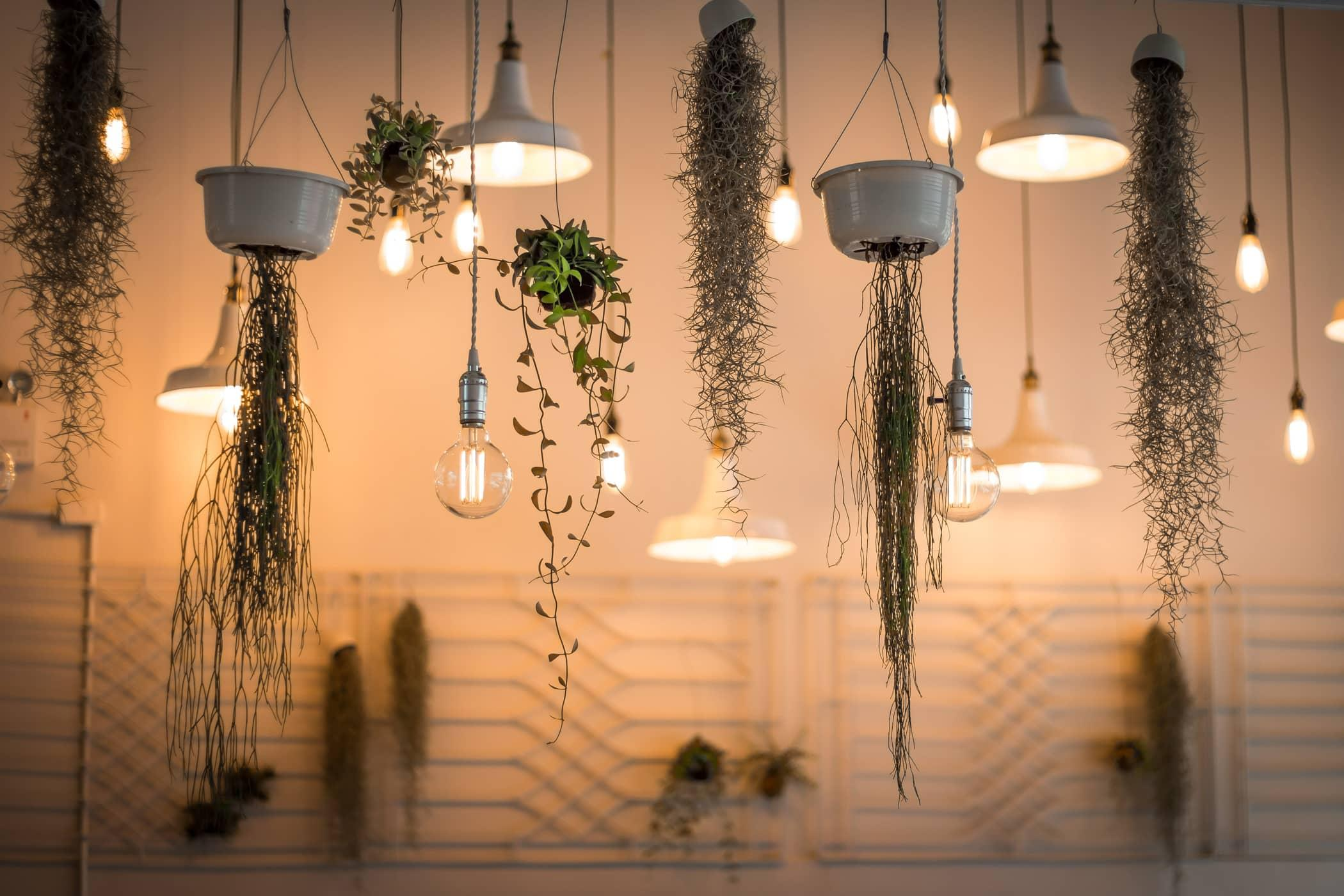 header-quirky-light-fixtures-min.jpg